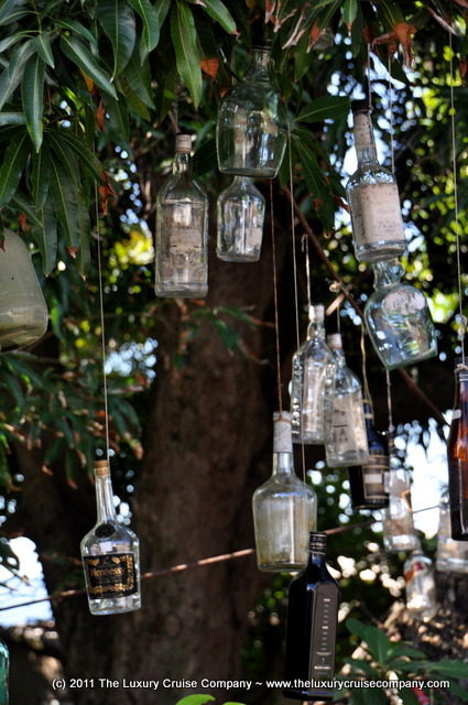 Bottles Hanging from a tree